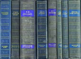 Библиотека поэта